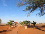 hotel na pustyni